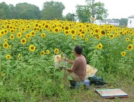Sunflowers Web