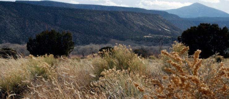 abiquiu-landscape-4