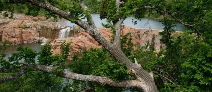 medicine-creek