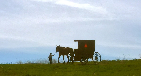 Our Amish Neighbors