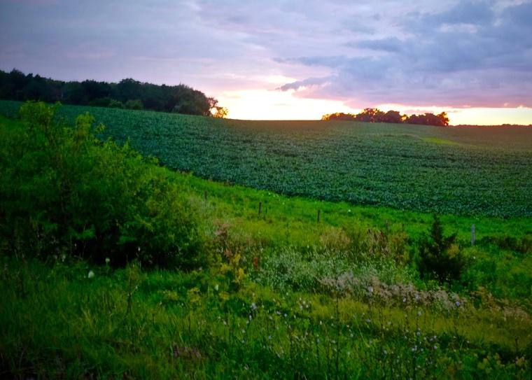 Decorah Sunset *
