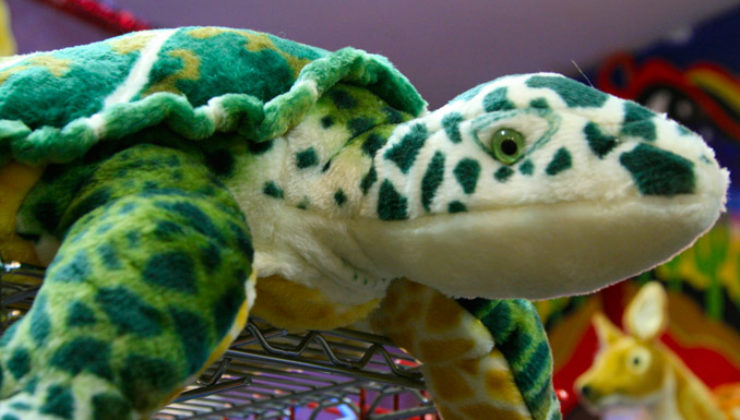 YS-Toy-Store-turtle